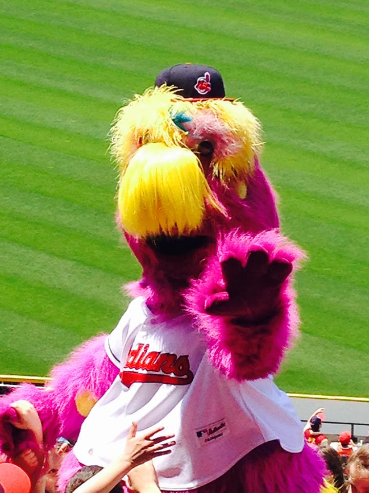 Slider Says Hello During A Day Game